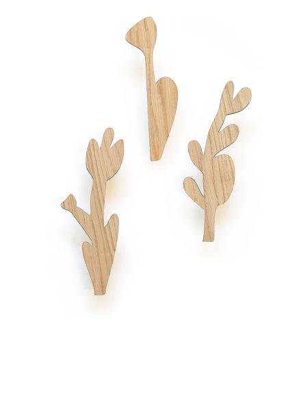 Flowers set wallhooks